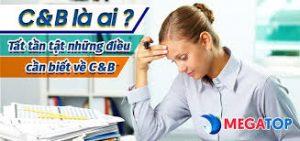 Chuyên viên C_B là ai?